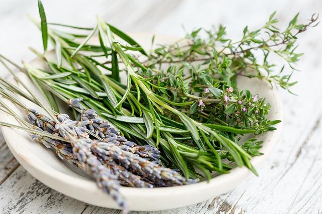 Fresh herb cuttings