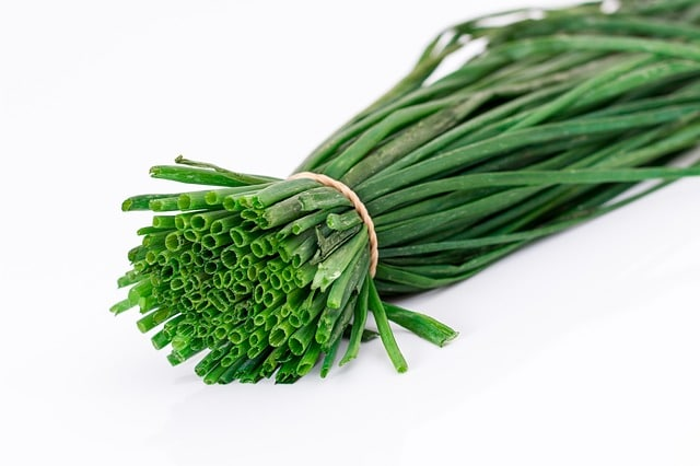 Chives Easy to Grow Herb