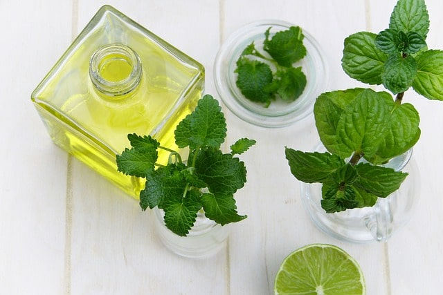 Mint is easy to grow and is also a mosquito-repellent!