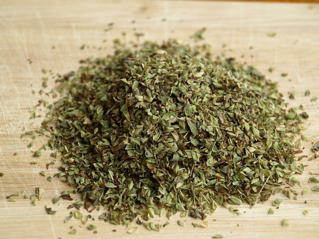 Oregano Herb Plant