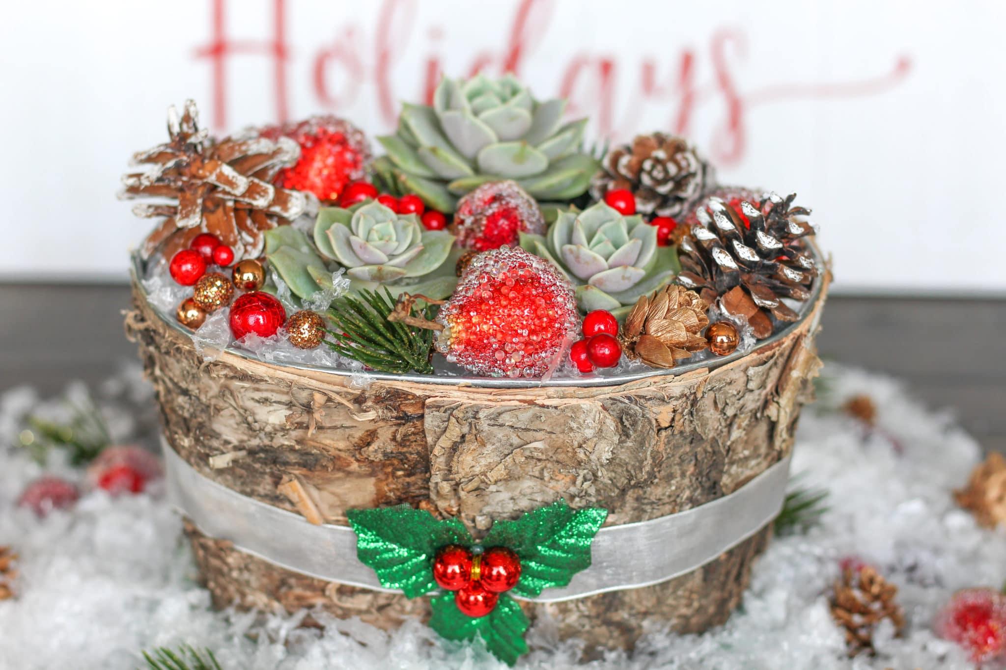 Christmas Succulent Decor.A Beautiful Diy Succulent Centerpiece For Your Christmas