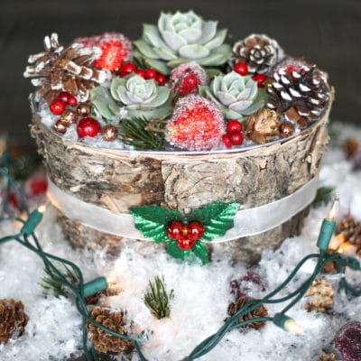 A Beautiful DIY Succulent Centerpiece for Your Christmas Table