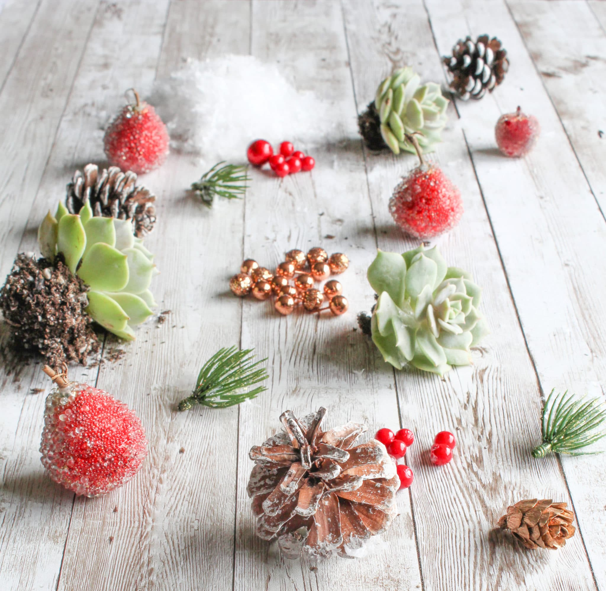 A Beautiful DIY Succulent Centerpiece for Your Christmas Table ...