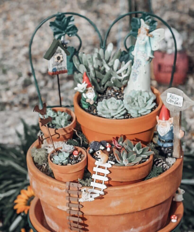 DIY Succulent Fairy Garden