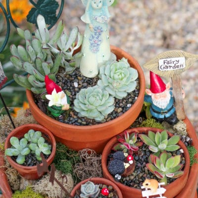 How to Make a Beautiful Fairy Garden for Your Yard