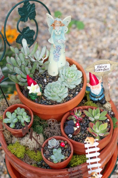 How to Use Succulents to Make a Beautiful Fairy Garden for Your Yard