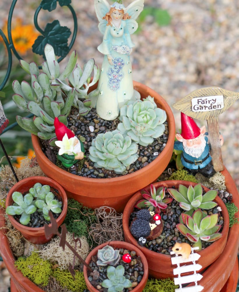 Learn how to make a DIY fairy garden!