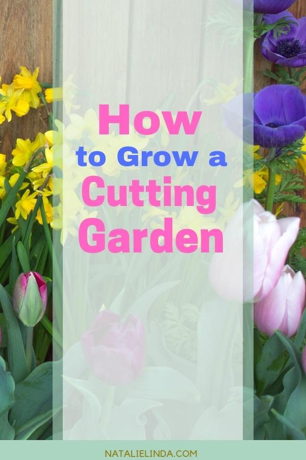 How to Grow a Beautiful Cutting Garden in Your Own Yard!